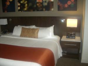 Delta Hotel (1)